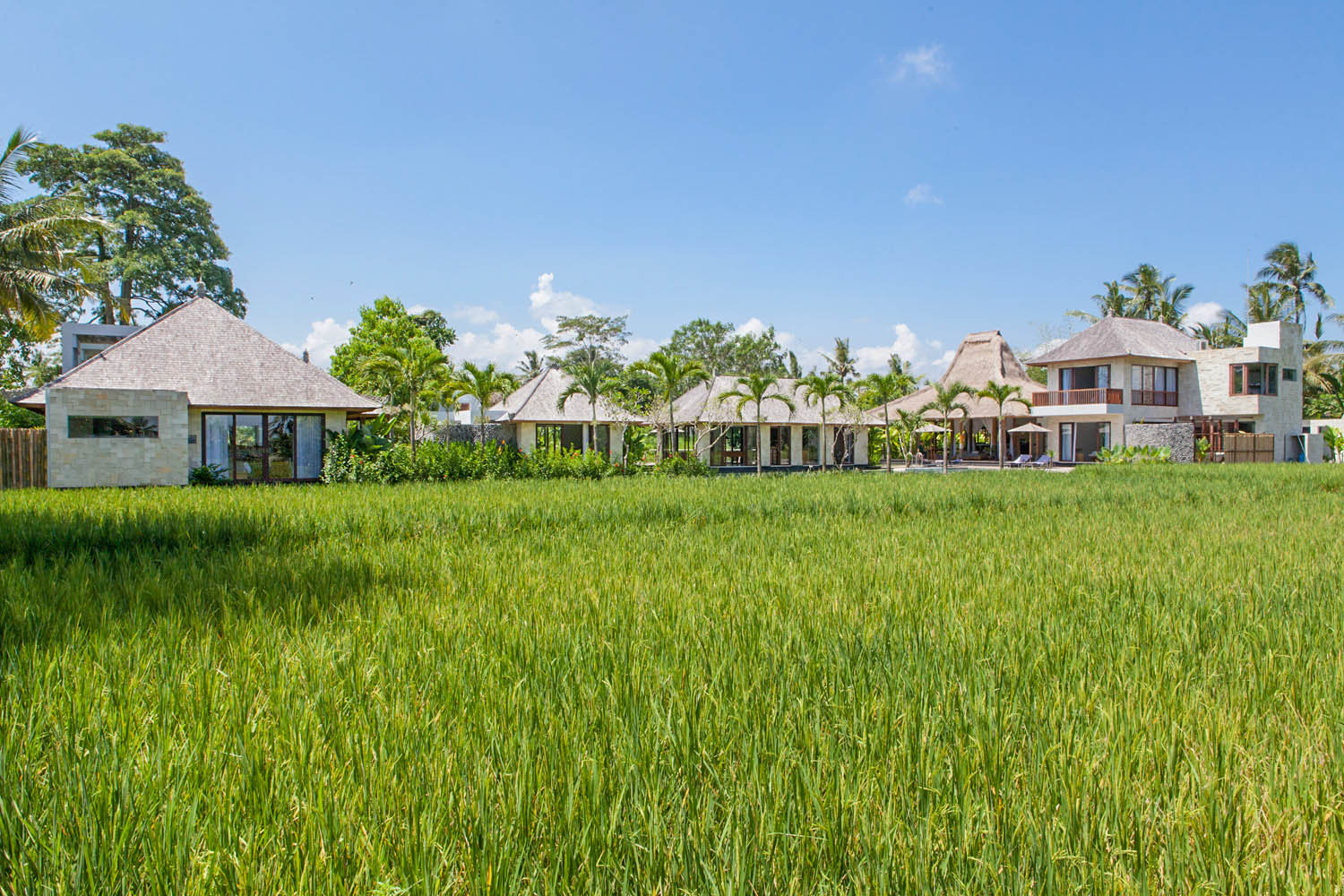 Villa Lumia Bali Overview from the rice fields